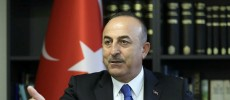 Turkish FM: US supports terrorists in Syria
